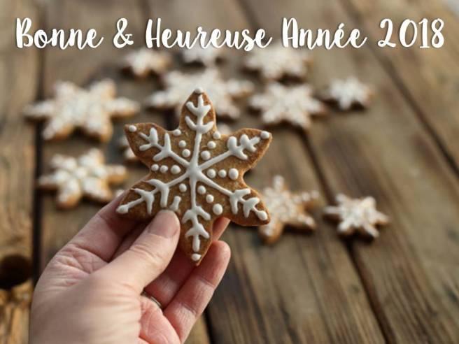 Bonne et heureuse année 2018.JPG